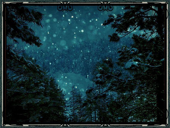 A Winter Scene - Digital Painting Avant-garde  EyeEmBestPics Taking Photos Digital Art EyeEm Masterclass Graphic Design Photoshop EyeEmBestPics Darkness Snow ❄ Thebestofeyeem Bokah #iamtheartist #gettygallery #eyeembestart #eyeemart #mystique #evergreens #night #nightgallery #nightime #haunting #artwork #photoart #picart #fantasy #illusion #reflections