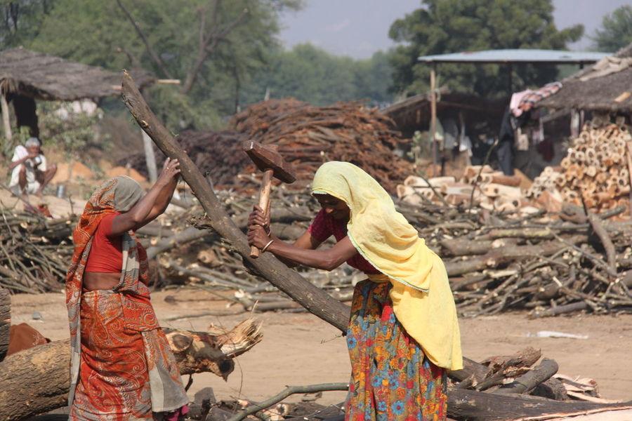 Hard Work Real People Women Women Of EyeEm Women Working In The Field . Wood Working Hard Working Woman Working Women