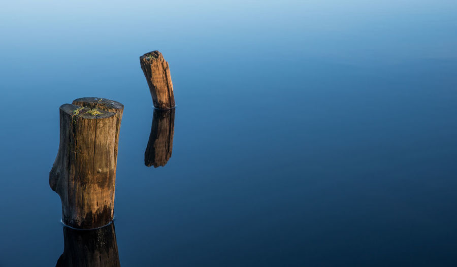 By the sea Background Blue Gloassy Light And Shadow Logs Minimalism Nature Reflection Still Sunlight Tranquility Water Wooden