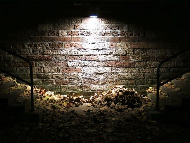 Autumn Leaves Autumn Night Night No People Water Nature Outdoors Brick Wall Illuminated Architecture