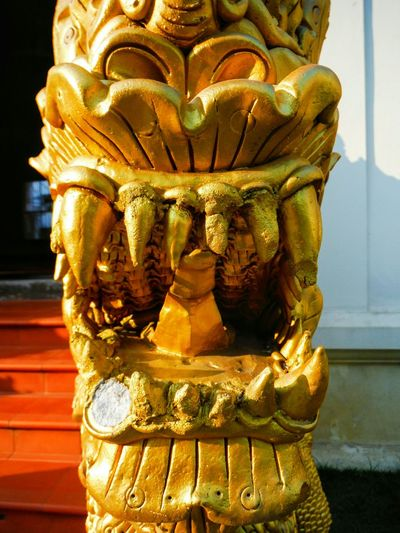 Dragon needs a dentist Missing Tooth Broken Missing Piece Statue Gold Colored Place Of Worship Spirituality Close-up Sculpture Detail Golden Buddhist Art Temple Decoration Shiny Chiang Mai Thailand Chiang Mai | Thailand Buddhist Temple Thailand Dragon Statue Fierce Mouth Fangs Teeth Dragon Teeth