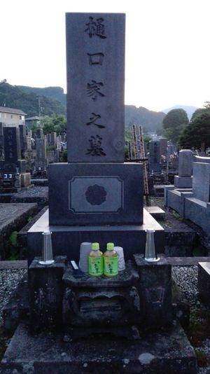 Té verde en el cementerio (Nikko, Japón) UltimateJapan