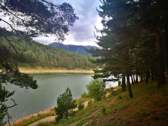 Lake Engolasters Mountain Tree Lake Water Nature Beauty In Nature Tranquility Outdoors Landscape Andorra🇦🇩