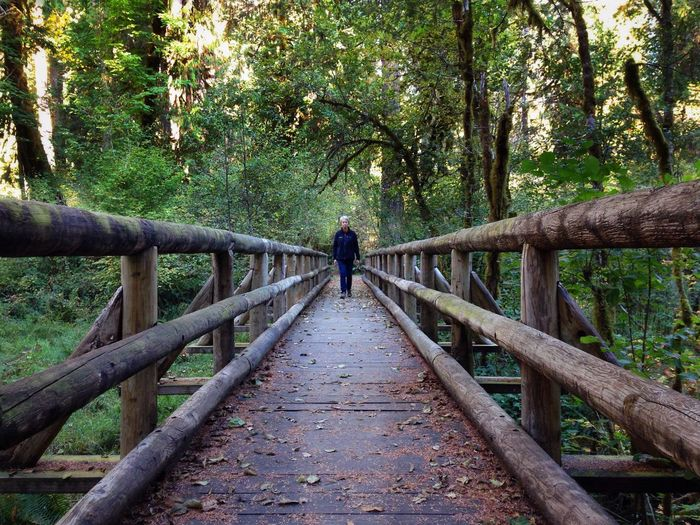 IPSPerspective IPhoneography Bridge Landscape Vanishing Point Forest Oregon Aufderheidi Willamette National Forest