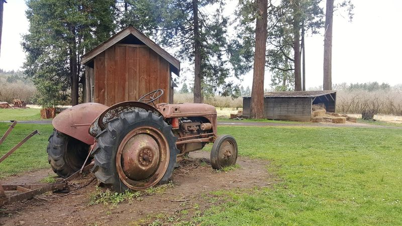 Old ranch scene with rusty Ford tractor. Red Tractor Ford Tree Field Grass Sky Architecture Tractor Agricultural Equipment Agricultural Machinery Farm Farmland Plough Cultivated Land Agricultural Field Plowed Field Visual Creativity