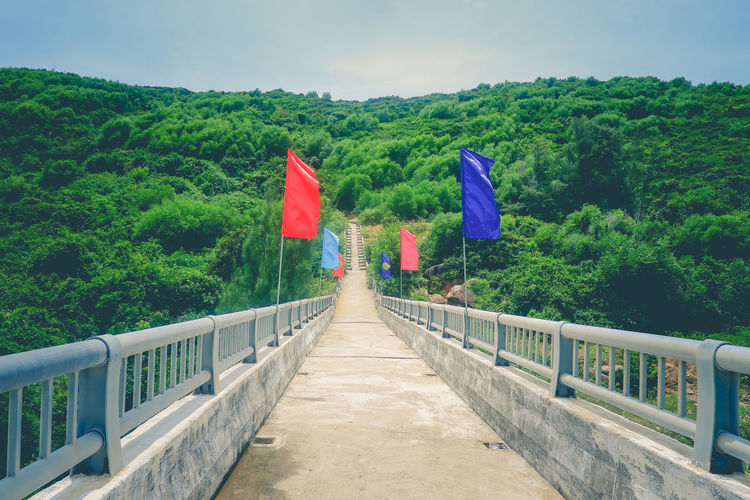 The Road EyeEm Nature Lover Nature Road Architecture Beauty In Nature Bridge Built Structure Connection Day Direction Flag Green Color Growth Landscape Multi Colored Nature No People Outdoors Patriotism Plant Railing Sky Tranquility Tree