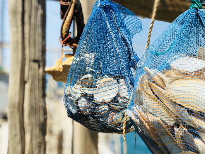 Close-up of fishing net hanging on wood