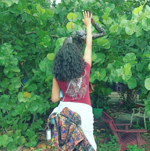 🍃❤ Rear View One Person Arms Raised Outdoors Green Color Leaf Women One Woman Only Reach Metalscrapsculpture