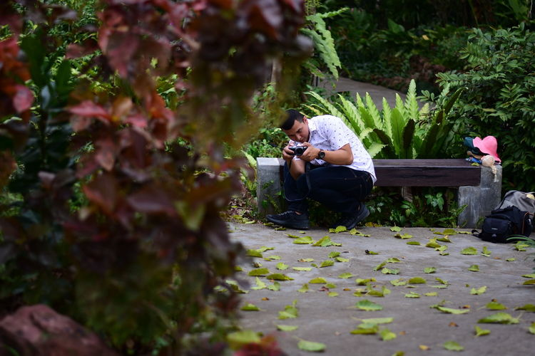 Rear view of man photographing while sitting on plant