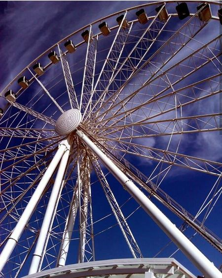 Ferriswheelinthecity🎡🎢 Seattle Place Of Heart Play Downtown Seattle Seahawks 12th Man PNW At Its Finest