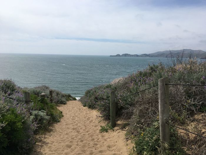 Pacific Coast Pacific Ocean Pacific California San Francisco Baker Beach Sea Sky Plant Water Tranquility Cloud - Sky Land Beauty In Nature Nature Tranquil Scene Horizon Scenics - Nature No People Beach Horizon Over Water Day Footpath Direction Outdoors