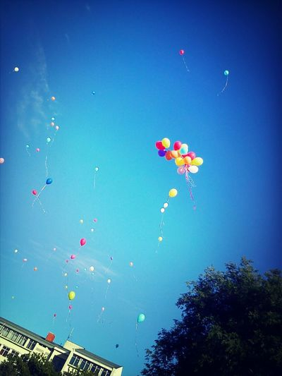 Subotica Serbia Ballons Sky And Ballons