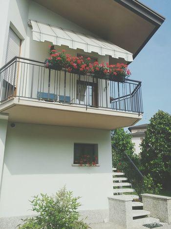 Terrazzo Balcone Fiori 🌷 Flowers 🌹