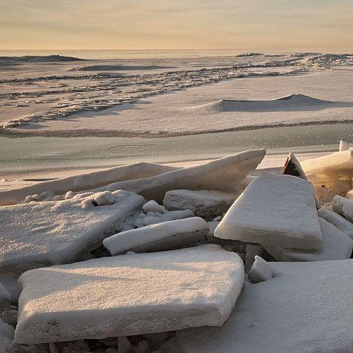 Winter Russia Finland_gulf Beach ice snow sunrise january morning horizon