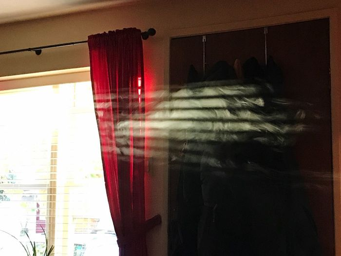 Close-up of curtain hanging at home