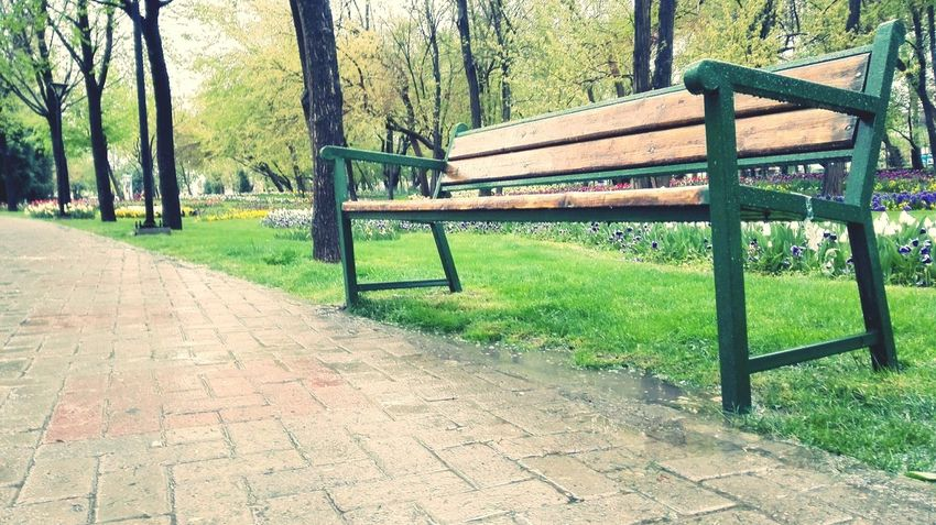 Hi! Check This Out A Good Day It Is.! Spring Is In The Air Rainy Day EyeMe Best Shot - Landscape Park Melat Mashhad Iran♥
