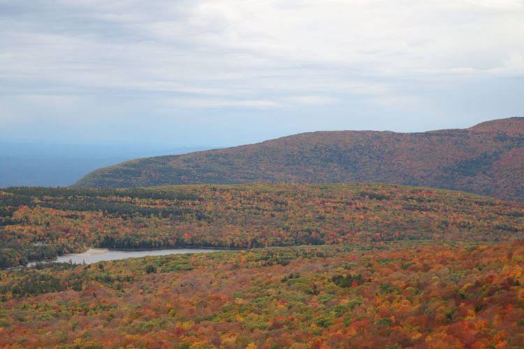 Autumn Autumn Colors Autumn Leaves Fall Fall Colors Fall Foliage Fall Leaves Hiking Landscape_Collection Landscape_photography Lanscape Leaves Mountains Nature Nature Photography Nature_collection New York NorthSouthLake Outdoor Photography Outdoors TheCatskillMountains Thecatskills