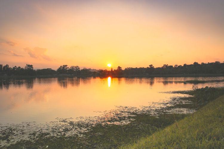 Sunset. Water Sunset Lake Tree Beauty Summer Sun Multi Colored Reflection Backgrounds