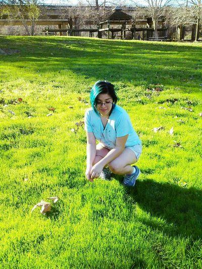 Nature Photography Earlywinter Green Green Green!  Grass Bluehairdontcare Glow Peo