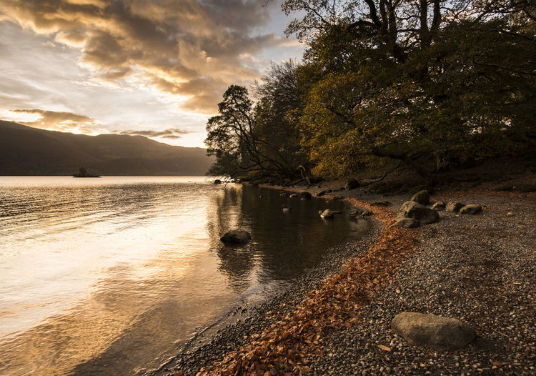 Golden hour on a beautiful Autumn morning in the Lake District Autumn Colors Gold Peace Travel Beauty In Nature Cloud - Sky Day Fall Festive Lake Leaves Nature No People Outdoors Reflection Scenics Season  Sky Sunrise Tranquil Scene Tranquility Tree Vibrant Water