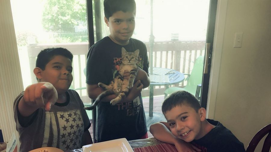 Funny Faces Looking At Camera My Kids Are Awesome My Gat It's A Cats Life