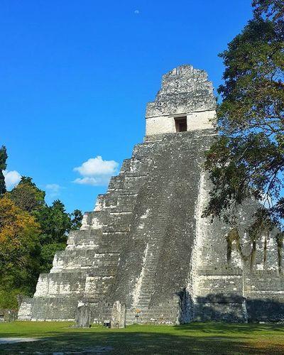 El arquitectura Maya en su explendor....Templo I Gran Jaguar 🐯 Ruinas Templos Temple Temples Ruins Ruinspictures Tikal Guatemala Peten Moon Architecture Maya Naturaleza Granjaguar