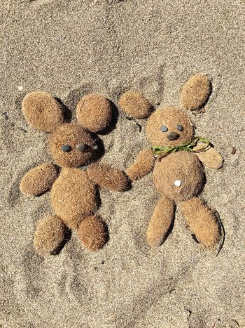 Lifestyles Funny Holidays Lovely Summer Sand & Sea Love Background Backgrounds Play Sand Shell Bear Little Bear Animal Peluches Beach Summertime Fun