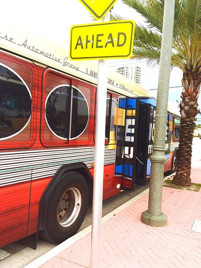 Bus Going In Florida Florida Capturing Freedom Stop Go Take It Let's Go Palm Trees