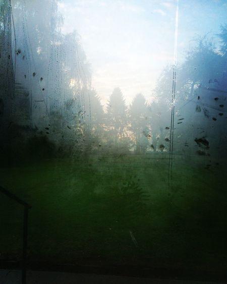 Mystic Mornings Mystic Nature Reflection Window Nature