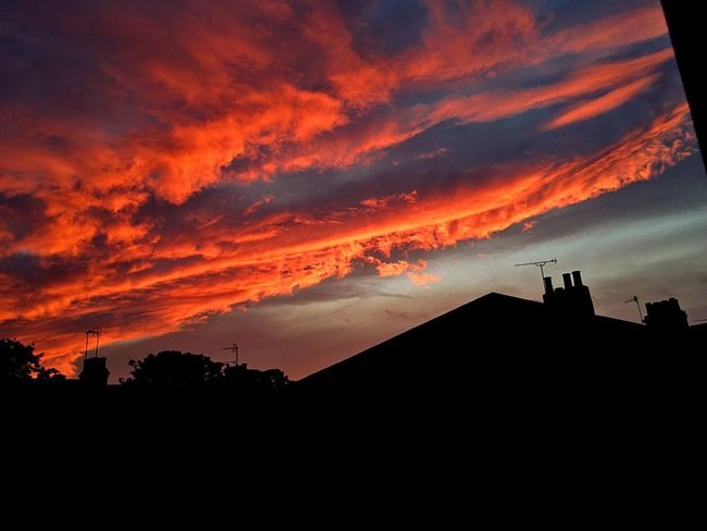Theskyisonfire Red Clouds Sky Sky And Clouds Sunset Evening Going Down Orange Color Landscape