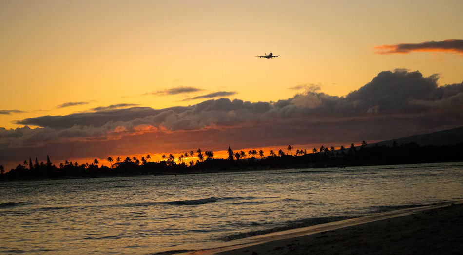 You are clear for landing. Sunset Sea Nature Beach Outdoors Landscape Airplane Hawaii