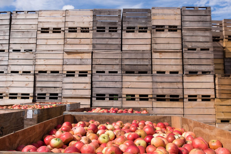 Stack of wooden apple crates with apples in foreground Abundance Agriculture Apple Boxes Close-up Day Food Food And Drink Freshness Fruit Healthy Eating Industry Large Group Of Objects No People Outdoors Retail  Stack Store Wooden Boxes