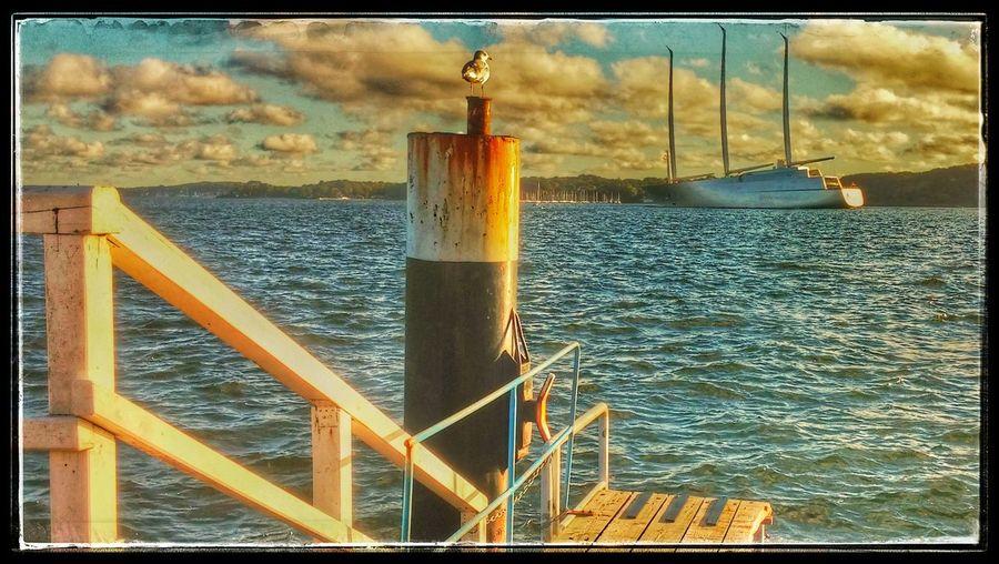 Probefahrt der White Pearl (A) in Kiel Sea Sky Ship Harbor Smartphone Photography Ocean Waterfront Kieł Kieler Bucht
