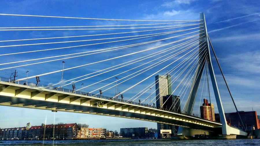 Cable-Stayed Erasmusbrug Over Nieuwe Maas Against Sky