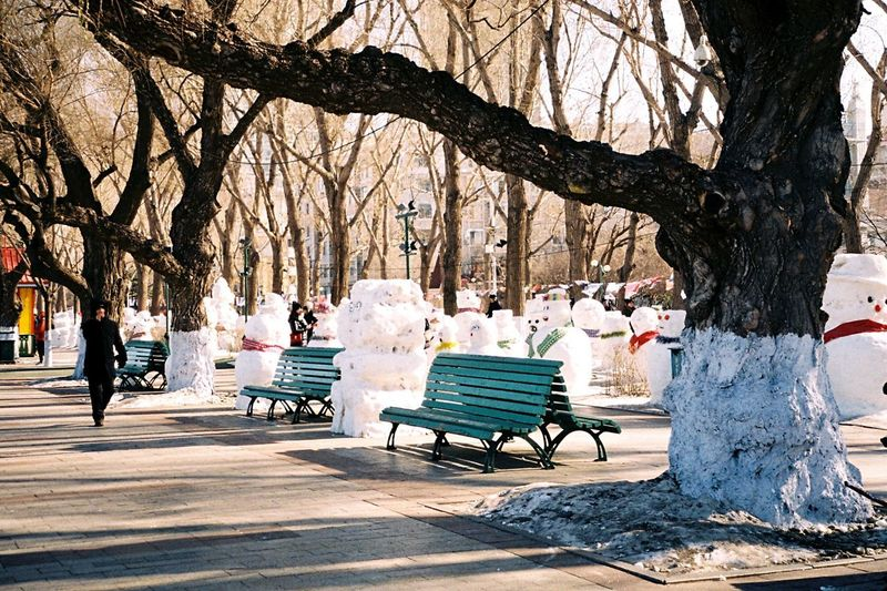 People sitting on bench in park during winter