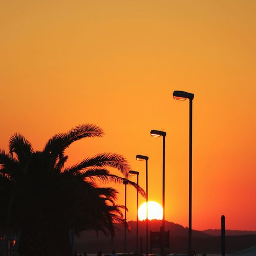 Low angle view of silhouette palm trees against orange sky