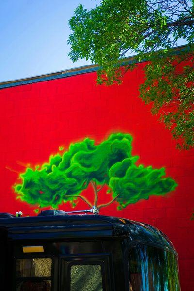 Vibrant Color Street Photography Colourful Banal Mundane EyeEm Best Shots Colours Streetphoto_color Kodachrome Colorful Streetphotographer Colorphotography EyeEm Gallery WilliamEggleston EyeemPhilippines Streetphotographyphilippines Week On Eyeem Banality Manitoba Color Photography Streetphotography Ordinary  Everyday Lives Everydayscenes Color