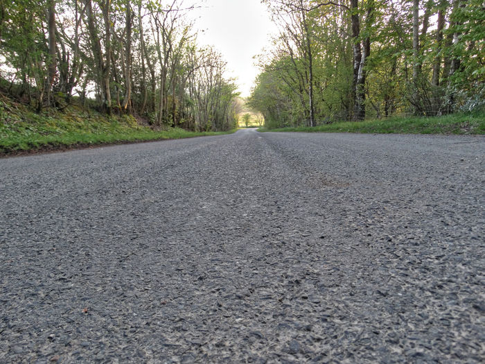 The road. Road Transportation Tree The Way Forward Direction No People Diminishing Perspective Nature vanishing point Gravel Street Non-urban Scene Land Tranquil Scene Surface Level Plant Asphalt Day Empty Outdoors Roadside Roads Tarmac Countryside Country Road