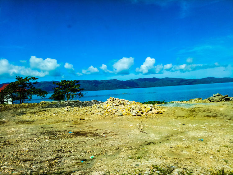 Blue Sea Sky Beach Nature Tree No People Horizon Over Water Water Scenics Beauty In Nature Tropical Climate Cloud - Sky Day Outdoors Sand Postcard Landscape UnderSea