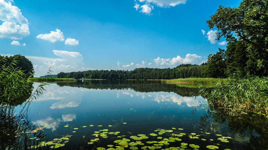 Beauty In Nature Blue Cloud - Sky Day Green Color Growth Idyllic Lake Nature No People Non-urban Scene Outdoors Plant Reflection Scenics - Nature Sky Tranquil Scene Tranquility Tree Water
