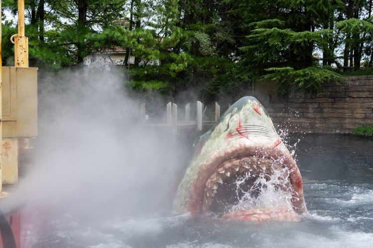 Angry shark. Angry Japan Jaws MOVIE OSAKA Universal Studios  Amusement Park Animals In The Wild Destroyed Entertainment Entertainment Event Fierce Motion Outdoors Park - Man Made Space Scenics Shark Smoke - Physical Structure Water