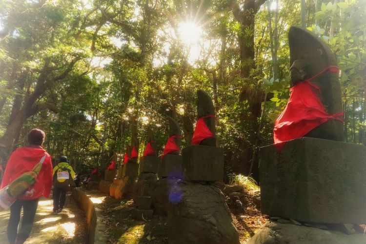 平戸 長崎 トレッキング 最教寺 お地蔵様 秋 秋風 Hirado Nagasaki Japan Trekking Walk Stone Statue Temple Growth Tree Day Outdoors Red Beauty In Nature Nature Autumn Sunlight Sunlight No People