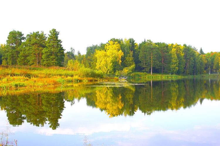 осень Золотая осень озеро Россия Pentax
