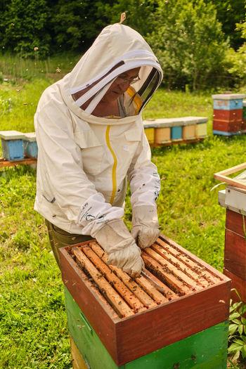 Man making honey