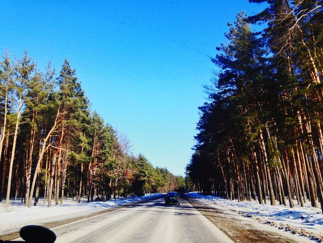 On The Road Snow Forest Sky Russia CAr 🔰