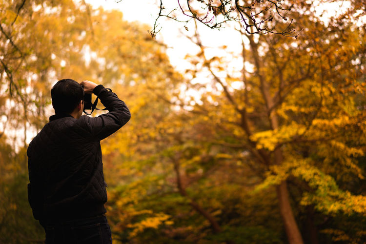 Rear view of photographer photographing autumn trees in park