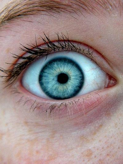 Omg Eye Eyeblue Beauty