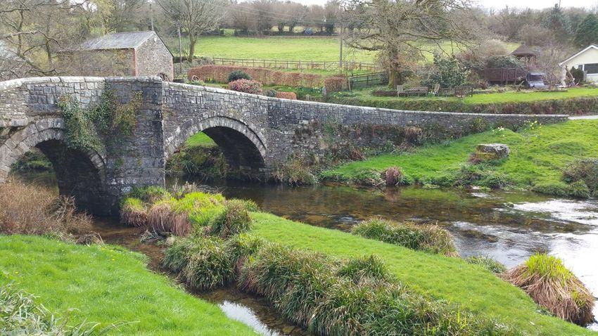 Cadoverbridge Grass Water Bridge No People Outdoors