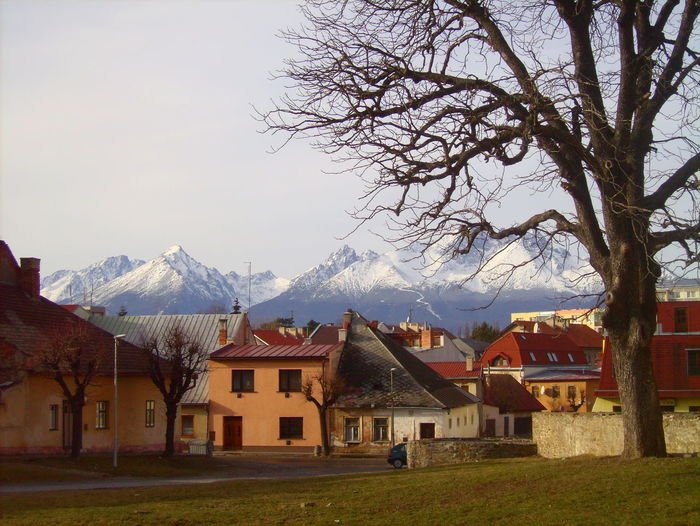 Ancient Civilization Architecture Building Exterior Countryside History Old Village Slowakia Tatra Mountains Town Tree Winter