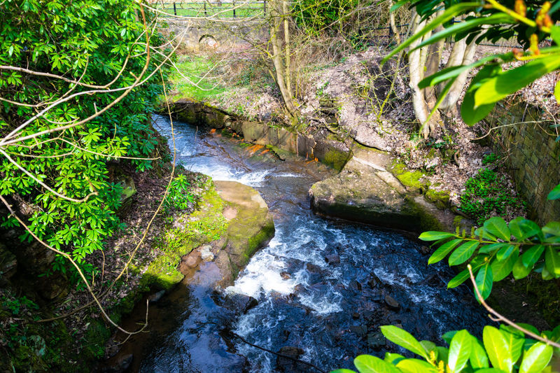 Nature Rock Beauty In Nature Park Bridge River Tameside Water Waterfall